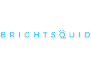 Brightsquid